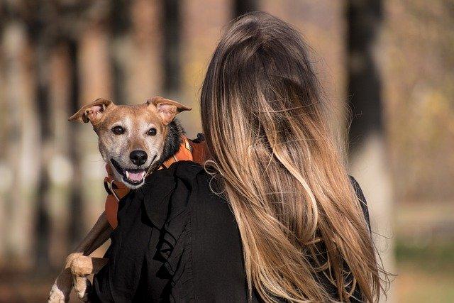kvinde der bærer hund